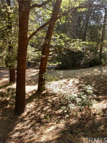 0 Mountain Home Creek Road, Angelus Oaks, CA 92305 (#EV20125238) :: The Laffins Real Estate Team