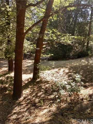 0 Mountain Home Creek Road - Photo 1