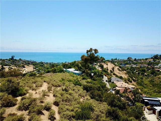 1526 Morningside, Laguna Beach, CA  (#LG20125524) :: Doherty Real Estate Group