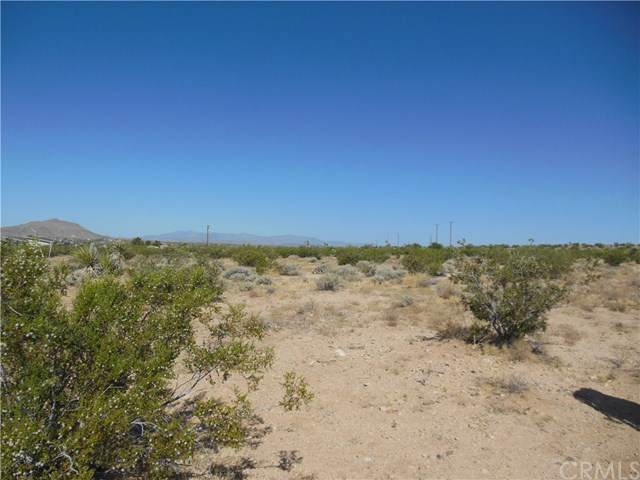 40202 Fortuna Road, Landers, CA 92285 (#OC20125555) :: eXp Realty of California Inc.