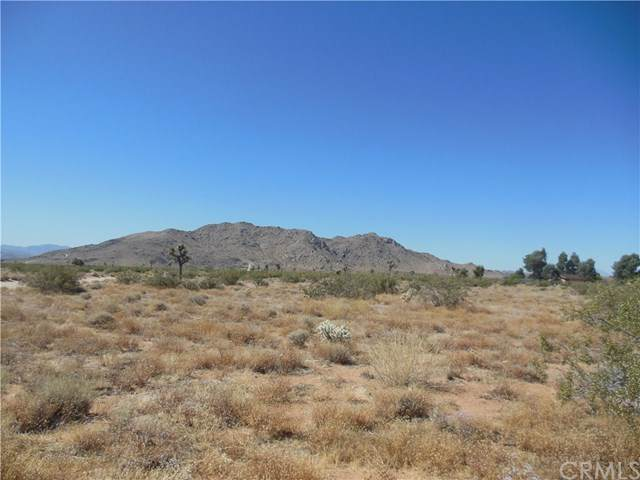 33114 Flamingo Avenue, Joshua Tree, CA 92252 (#OC20125560) :: Berkshire Hathaway HomeServices California Properties