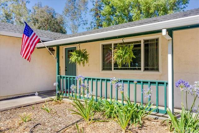 4655 County Road H, Orland, CA 95963 (#SN20125479) :: Berkshire Hathaway HomeServices California Properties