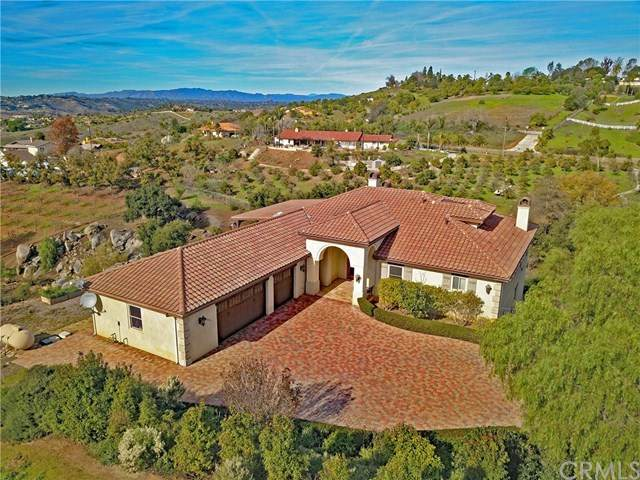 31781 Wrightwood Road, Bonsall, CA 92003 (#ND20124256) :: Re/Max Top Producers