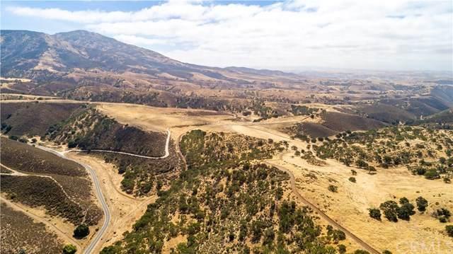 0 Shirtail Canyon (Hwy 146) - Photo 1