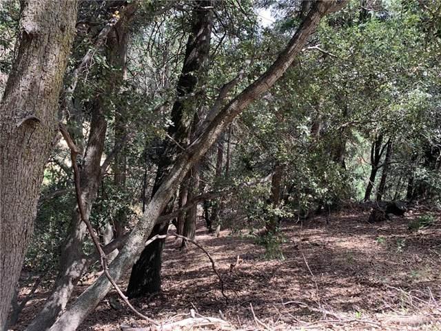 0 Fern Hill Drive, Cedarpines Park, CA  (#EV20126611) :: Mark Nazzal Real Estate Group