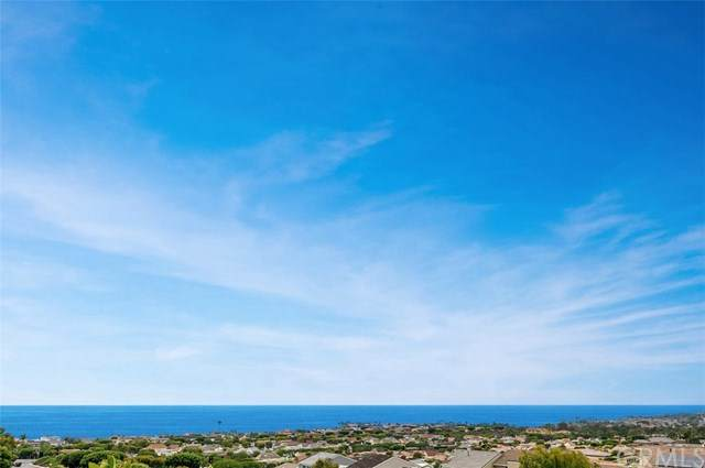 24121 Gourami Bay, Dana Point, CA 92629 (#OC20126290) :: Wendy Rich-Soto and Associates