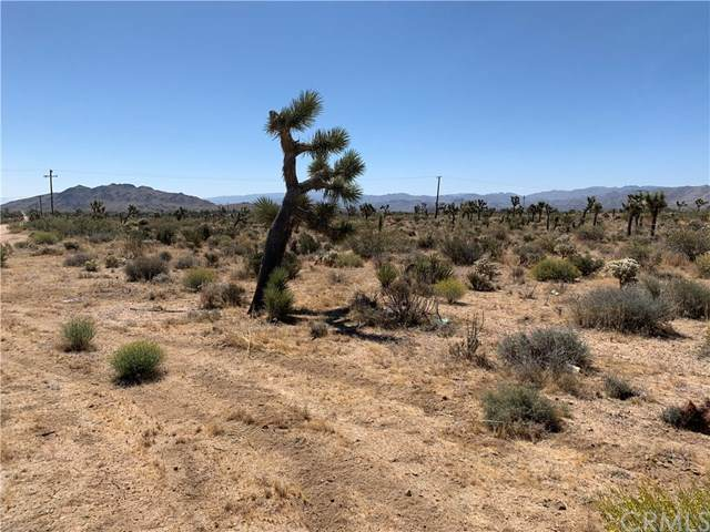 0 Avalon/Mesa, Yucca Valley, CA 92284 (#JT20123580) :: Allison James Estates and Homes