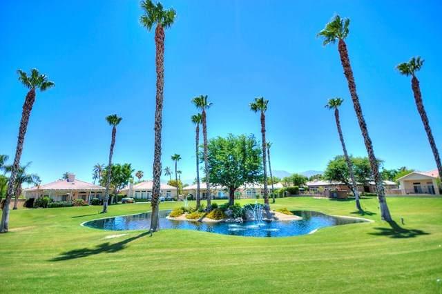82651 Sky View Lane, Indio, CA 92201 (#219045248DA) :: Sperry Residential Group