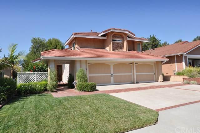 362 S Basil Street, Anaheim Hills, CA 92808 (#PW20127032) :: RE/MAX Empire Properties