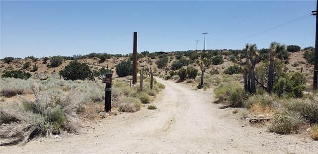 30716 Largo Vista Road, Llano, CA 93544 (#DW20127746) :: Powerhouse Real Estate