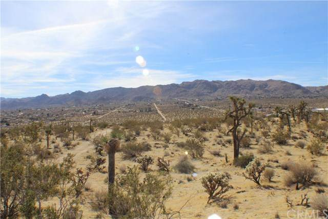5353 Delaware Avenue, Joshua Tree, CA 92252 (#JT20127837) :: The Laffins Real Estate Team