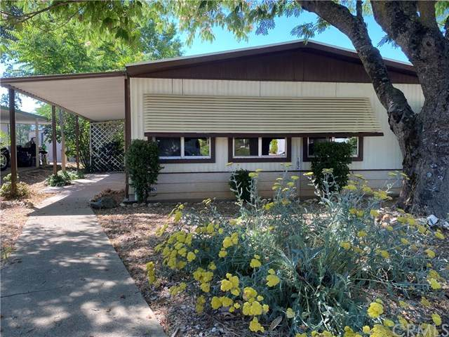 5277 State Hwy 49 N. #102, Mariposa, CA 95338 (#MP20125929) :: The Marelly Group | Compass