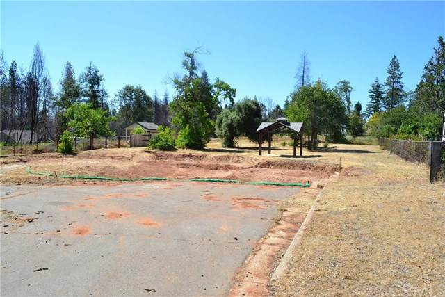 1650 Young Avenue, Paradise, CA 95969 (#SN20128081) :: The Miller Group