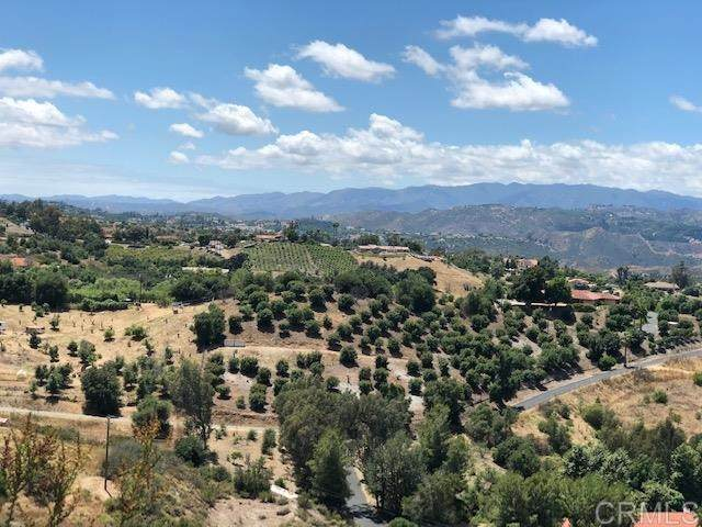 3104 Red Mountain Heights Dr, Fallbrook, CA 92028 (#200030410) :: A|G Amaya Group Real Estate