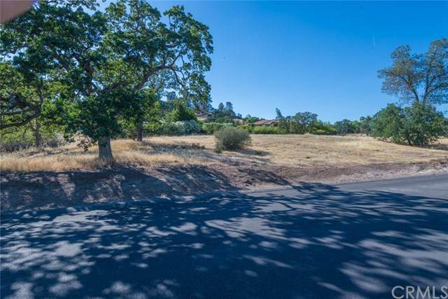3460 Shadowtree Lane, Chico, CA 95928 (#SN20124421) :: The Miller Group