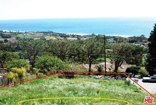 30015 Andromeda Lane, Malibu, CA 90265 (#20598674) :: Camargo & Wilson Realty Team