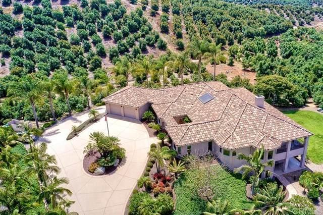 6638 Morro Heights Rd, Oceanside, CA 92057 (#200030497) :: A|G Amaya Group Real Estate