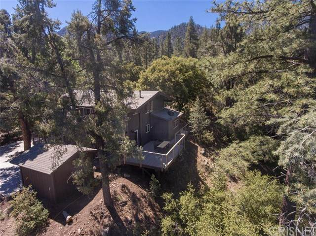 2117 Bernina Drive, Pine Mountain Club, CA 93222 (#SR20125910) :: Compass