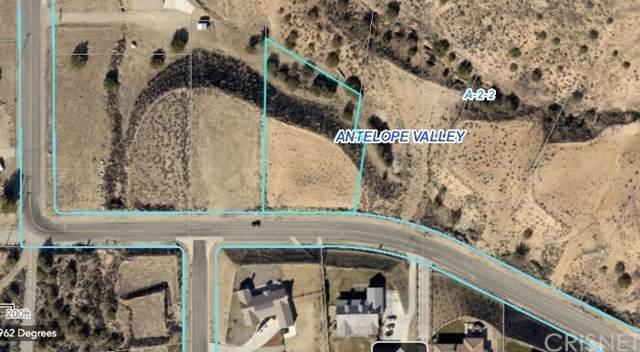 0 Vac/Ave Y8/Vic Lawson Court, Acton, CA 93510 (#SR20129182) :: RE/MAX Masters