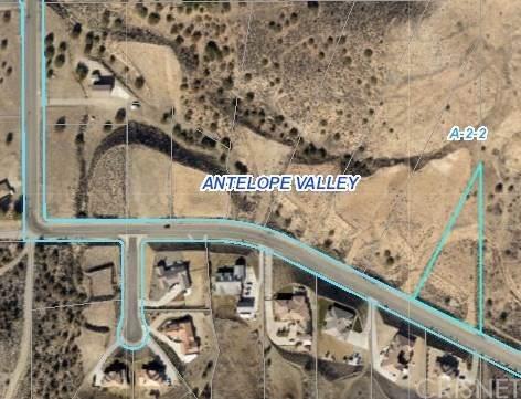 0 Vac/Ave Y8/Vic Lawson Court, Acton, CA 93510 (#SR20129228) :: RE/MAX Masters
