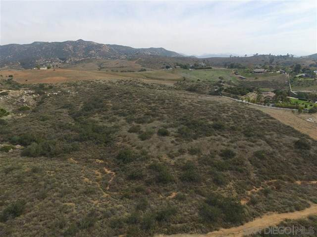 13505 Hillside Estates Dr, Jamul, CA 91935 (#200030638) :: Rogers Realty Group/Berkshire Hathaway HomeServices California Properties