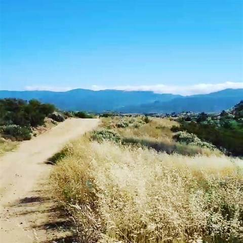 0 Los Altos, Sage, CA 92544 (#200030665) :: Realty ONE Group Empire