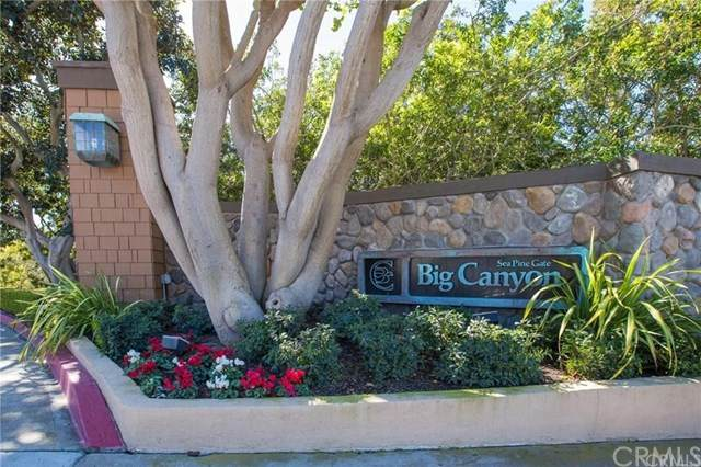 33 Canyon Island Drive #33, Newport Beach, CA 92660 (#PW20128691) :: Doherty Real Estate Group