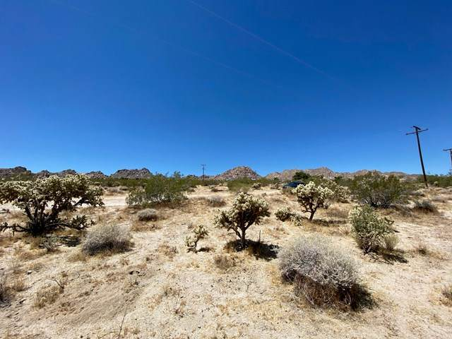 64024 Sullivan Road, Joshua Tree, CA 92252 (#219045440DA) :: The Costantino Group | Cal American Homes and Realty