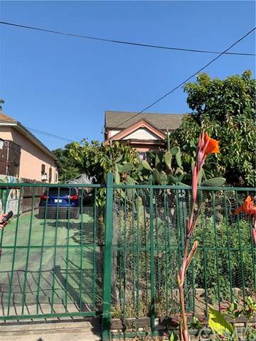 2814 Maple Avenue, Los Angeles (City), CA 90011 (#DW20129564) :: The Costantino Group | Cal American Homes and Realty
