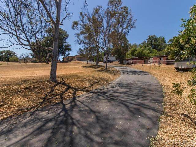 38089 De Luz Rd, Fallbrook, CA 92028 (#200030805) :: A|G Amaya Group Real Estate