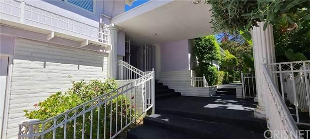 20226 Lorenzana Drive, Woodland Hills, CA 91364 (#SR20129872) :: A|G Amaya Group Real Estate
