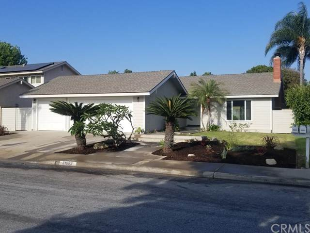 31052 Via Solana, San Juan Capistrano, CA 92675 (#PW20130038) :: Hart Coastal Group