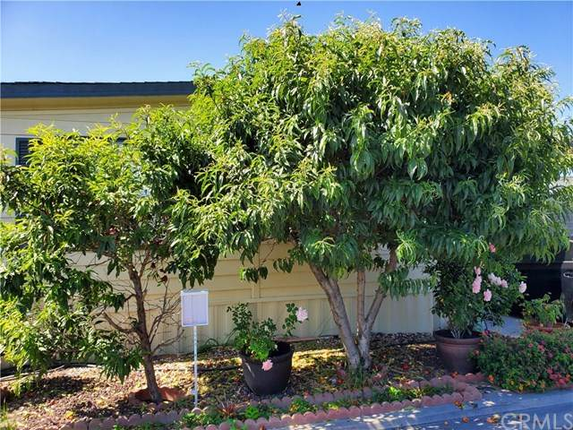 9800 Bolsa #29, Westminster, CA 92683 (#PW20130079) :: Sperry Residential Group
