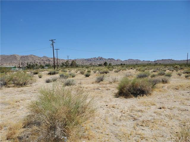0 Twentynine Palms Highway, Joshua Tree, CA 92252 (#JT20130252) :: Allison James Estates and Homes