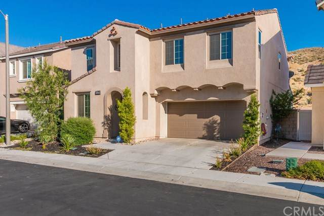 24137 Lavendar Drive, Lake Elsinore, CA 92532 (#SW20130715) :: Realty ONE Group Empire