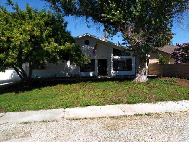42160 Mayberry Avenue, Hemet, CA 92544 (#IV20130714) :: Realty ONE Group Empire