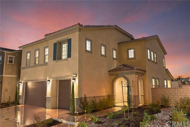 24472 Paxton Lane, Lake Elsinore, CA 92532 (#SW20129873) :: The Miller Group