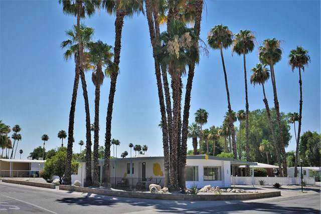 235 Marisma Way, Cathedral City, CA 92234 (#219045571PS) :: Sperry Residential Group