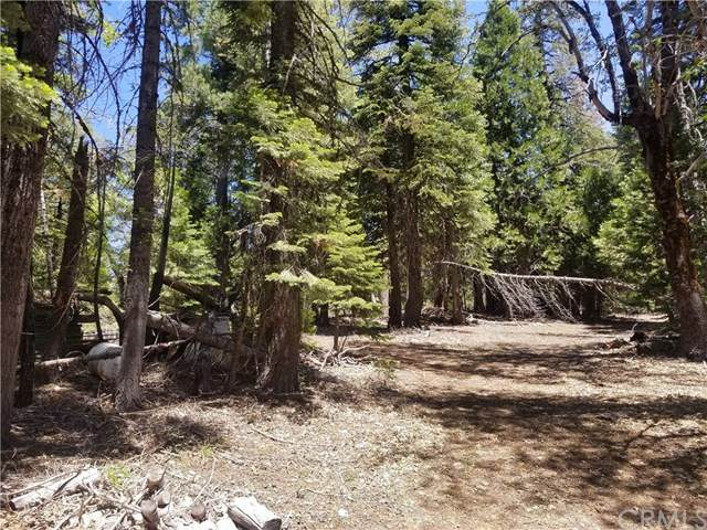 0 Skyway, Butte Meadows, CA 95942 (#SN20127242) :: Keller Williams | Angelique Koster