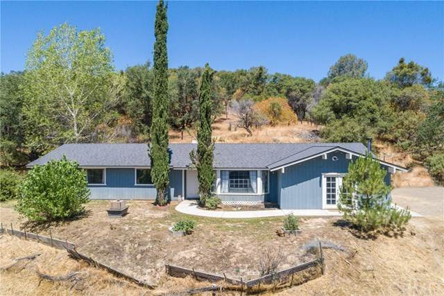 30966 Road 222, North Fork, CA 93643 (#FR20131166) :: Twiss Realty
