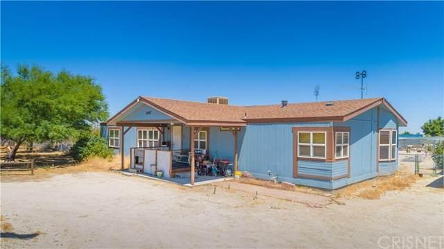 11647 E Avenue R2, Littlerock, CA 93543 (#SR20127448) :: Allison James Estates and Homes