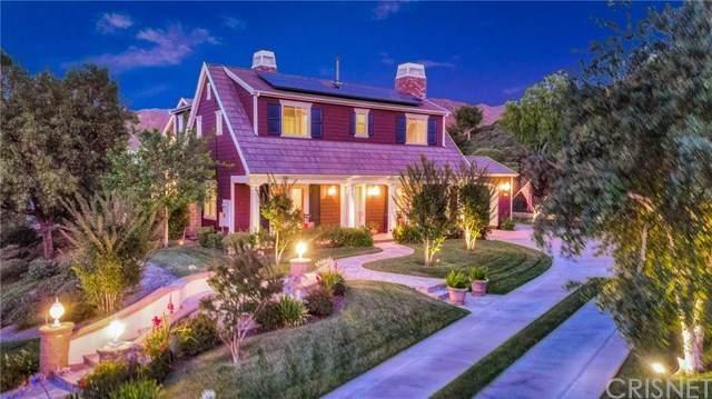27214 Appaloosa Road, Canyon Country, CA 91387 (#SR20131433) :: Twiss Realty