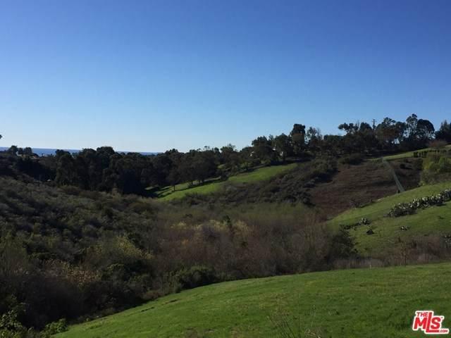 28904 Verde Mesa Lane, Malibu, CA 90265 (#20600268) :: Compass