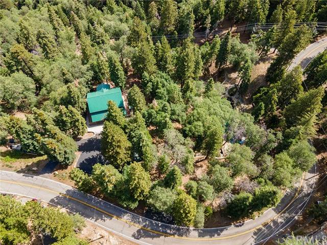 1717 Wilderness Road, Running Springs, CA 92382 (#OC20125750) :: Rogers Realty Group/Berkshire Hathaway HomeServices California Properties