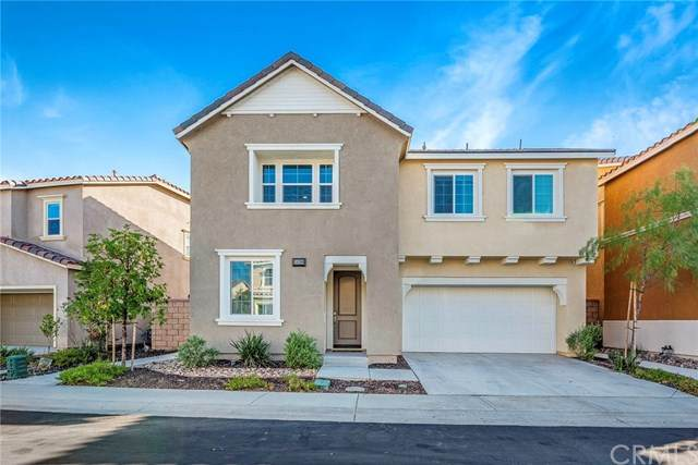 24199 Lilac Lane, Lake Elsinore, CA 92532 (#CV20132301) :: Allison James Estates and Homes