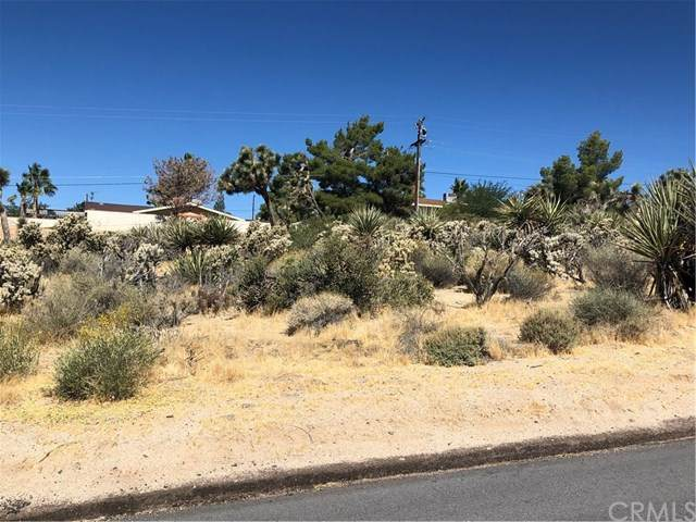 0 Imperial, Yucca Valley, CA 92284 (#JT20132468) :: Sperry Residential Group