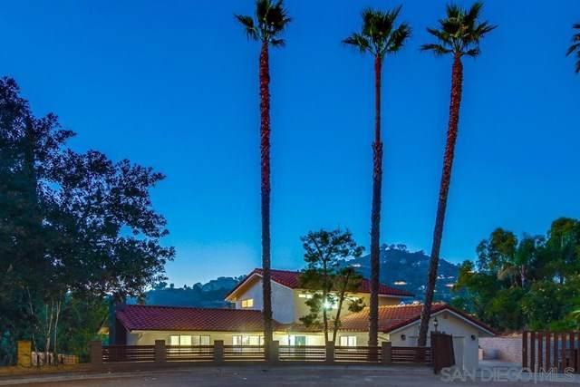 9812 Bonnie Vista Place, La Mesa, CA 91941 (#200031483) :: Steele Canyon Realty