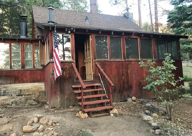 25250 Rim Rock Road, Idyllwild, CA 92549 (#PW20133575) :: Bob Kelly Team