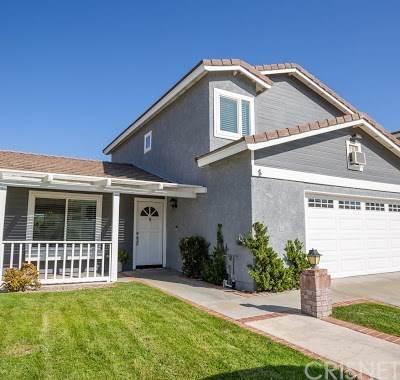 27646 Buckskin Drive, Castaic, CA 91384 (#SR20133296) :: Mainstreet Realtors®