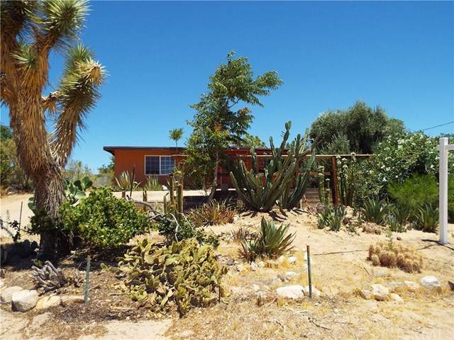 59156 Nelson Avenue, Yucca Valley, CA 92284 (#IG20133216) :: Sperry Residential Group
